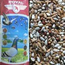 Royal energy light 20 kg