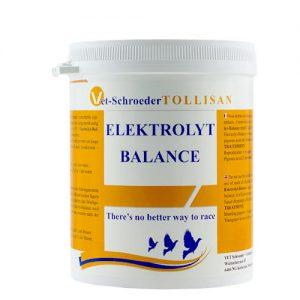 Tollisan Electrolyte Balance – 500g