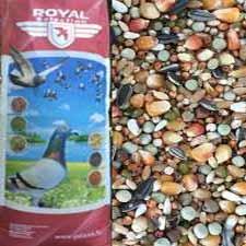 Royal rövidcsőrű (short) 20 kg